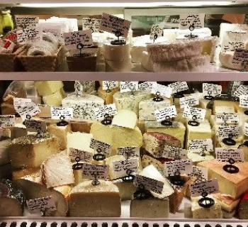 Cheese counter Photo