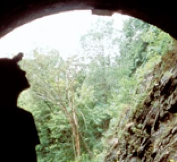 Paw Paw Tunnel Photo