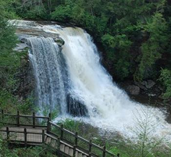 swallow falls Photo