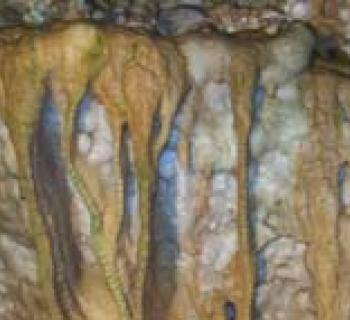 Stalagtites at Crystal Grottoes Caverns Photo