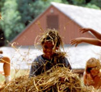 Children in playing in hay Photo
