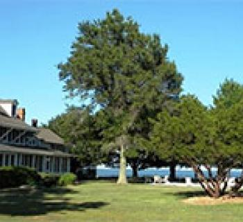 Black Walnut Point Inn Photo