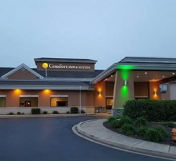 Comfort Inn & Suites-North East Photo
