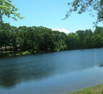 The lake at Take It Easy Campground Photo