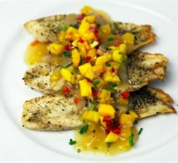 Broiled Tilapia Photo