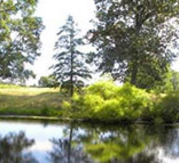 Pond at Breton Bay Golf Club Photo