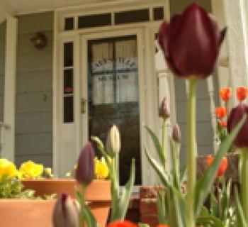 House with pots of tulips Photo