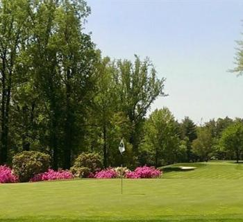 View of a green and fairway at Hillendale Country Club Photo