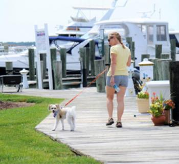 woman walking dog at Mears Point Marina Photo