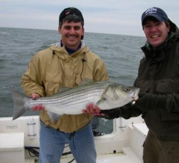 Tide Runner Fishing Charters Photo