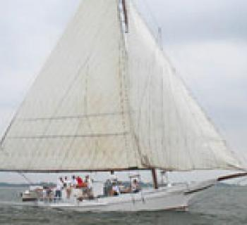 Skipjack Kathryn Photo