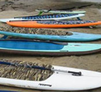 Shore Pedal and Paddle Photo
