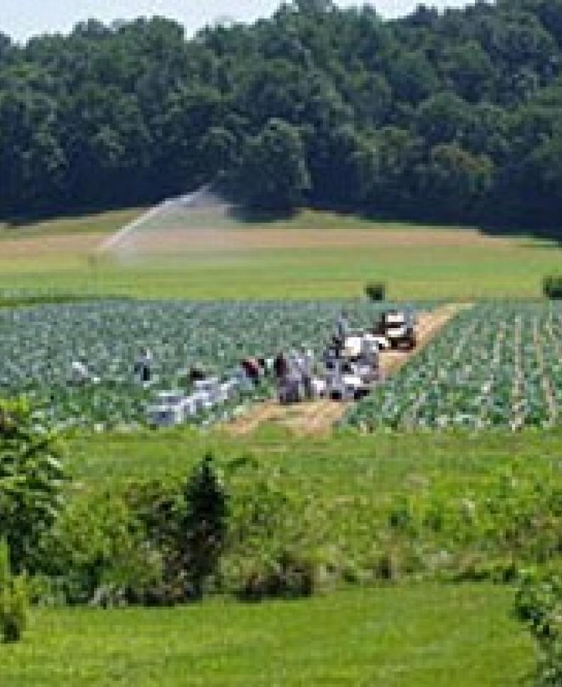 Richardson Farms White Marsh Visitmaryland Org