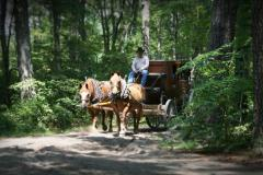 Frontier Town & Fort Whaley Campgrounds