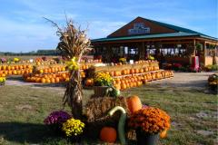 Adkins Farm Market - Salisbury