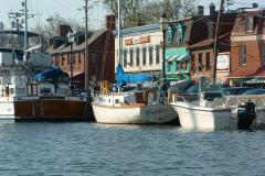 Cruise up in your boat to Ego Alley, or come on foot and marvel at the beautiful boats.