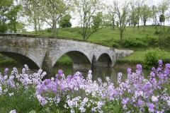 This now scenic bridge over Antietam Creek was once the site of intense fighting. Confederate soldiers held the area overlooking the bridge until Union General Ambrose Burnside's command captured the bridge and crossed the creek.