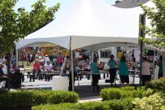 ArtsFest La Plata