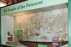 People of the Patuxent Exhibit at the Calvert Marine Museum