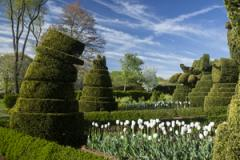 Ladew Gardens in spring