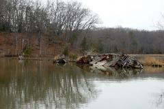 Mallows Bay Shipwreck