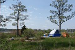Camping at Point Lookout State Park