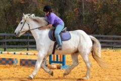 A rider on a white horse at Rolling Hill Ranch