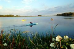Blackwater Refuge offers land trails, paddling trails, exceptional bird and wildlife viewing, as well as hunting, fishing and crabbing opportunities in season. Several local outfitters offer canoe, kayak or bicycle rentals.