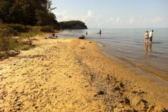 This Chesapeake Bay beach is famous with fossil hunters looking for sharks teeth.