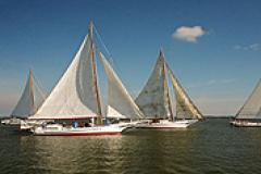 Skipjacks sailing during the Choptank Heritage Skipjack Race