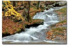 Cunningham Falls is known for its scenic beauty, history and 78-ft. cascading waterfall, plus great hunting, swimming, beaches, boat rental, hiking, and camping.