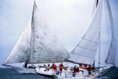 Deal Island Skipjack Race