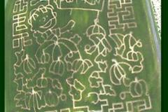 Bowles Farms Corn Maze