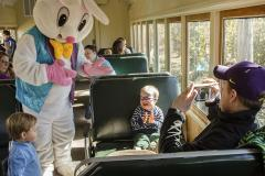 Easter bunny on a train