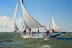Deal Island Skipjack Races