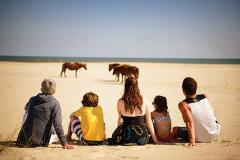 Family on the beach with ponies
