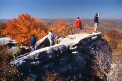Garrett County Rocks and Trees