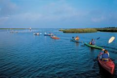 Janes Island is an ideal spot for watersports like kayaking.