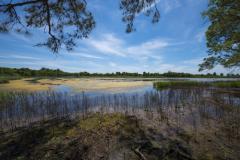 Queen Annes Co. Chesapeake Bay Environmental Center marsh
