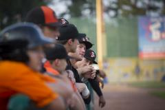 Shorebirds Dugout