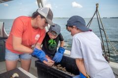 Visitors Inspect the Catch while on a Solomon's Island Heritage Tour