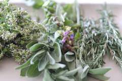 Image of herbs