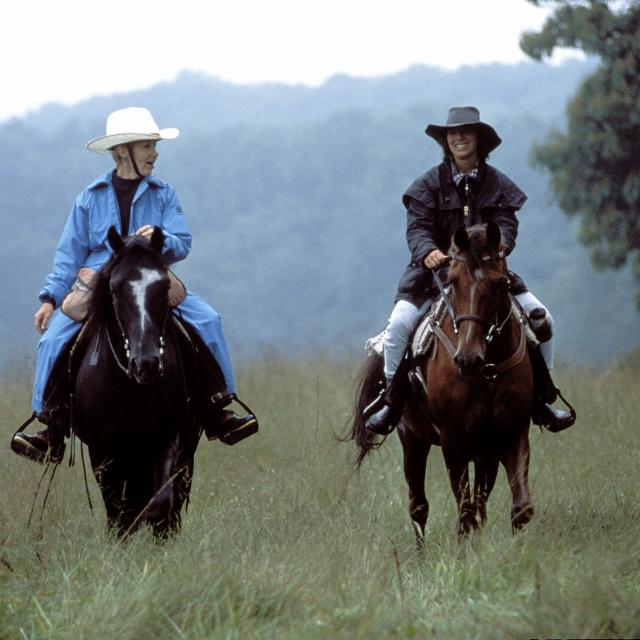 Horseback Riding in MD - Horseback Riding Near Me   Visit