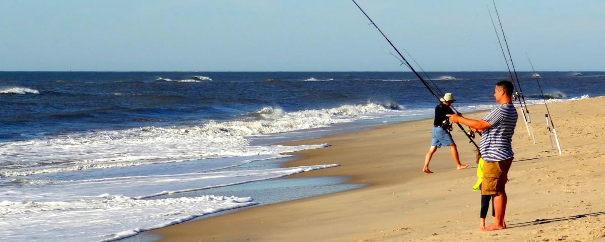 Beaches Photos Videos