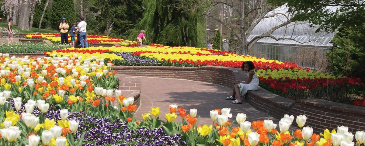 """""""Hop"""" over to these public gardens in Spring (and other times of year) to see hundreds of blooms."""