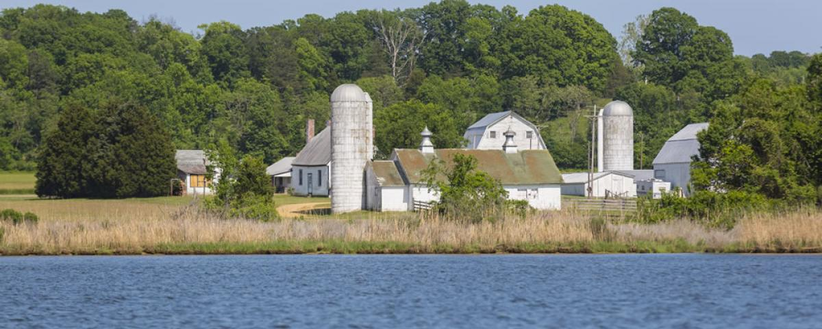 Leonardtown Waterfront Farm