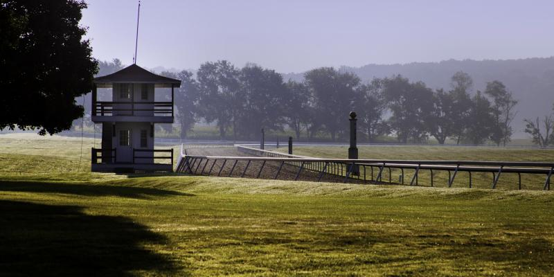 Winning Thoroughbreds exercise at the Sagamore Farm Practice Track, which has a surface that incorporates recycled Under Armour fabric as a base component.