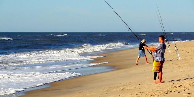 Fish in the Atlantic from peaceful Assateague Island.