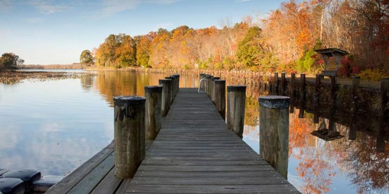 Just south of Denton, Martinak State Park sits along the Choptank River. Camping, cabins, boat launches and rentals, fishing, canoeing and picnic areas are available.