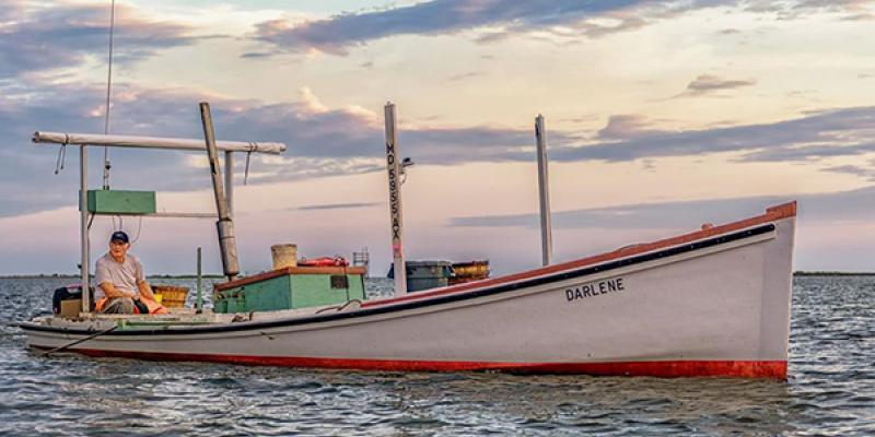 Smith Island Waterman Morris Marsh on Crab Scrape Darlene